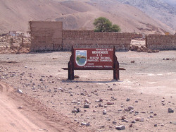 Reserva Nacional Pampa del Tamarugal