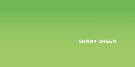 Sunny Green Brand Guide