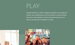 Veridian website image: play