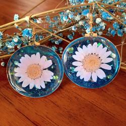 Sky Lavender Earrings