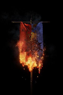 burning flag.jpg