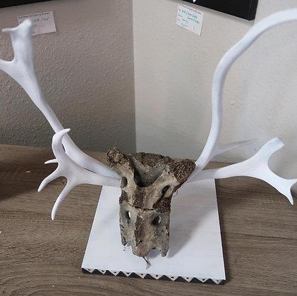 Tuttuman Sculpture