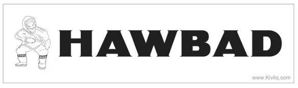 Hawbad Bumper Sticker