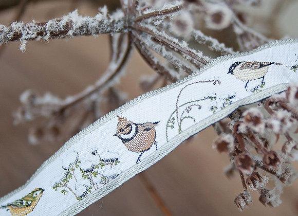 Vögel im Wintergarten