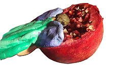 pomegranate real close up 4_burned.jpg