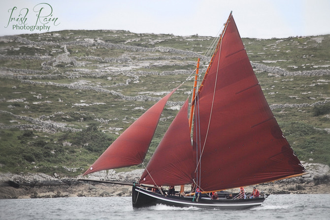 More Galway Hookers...