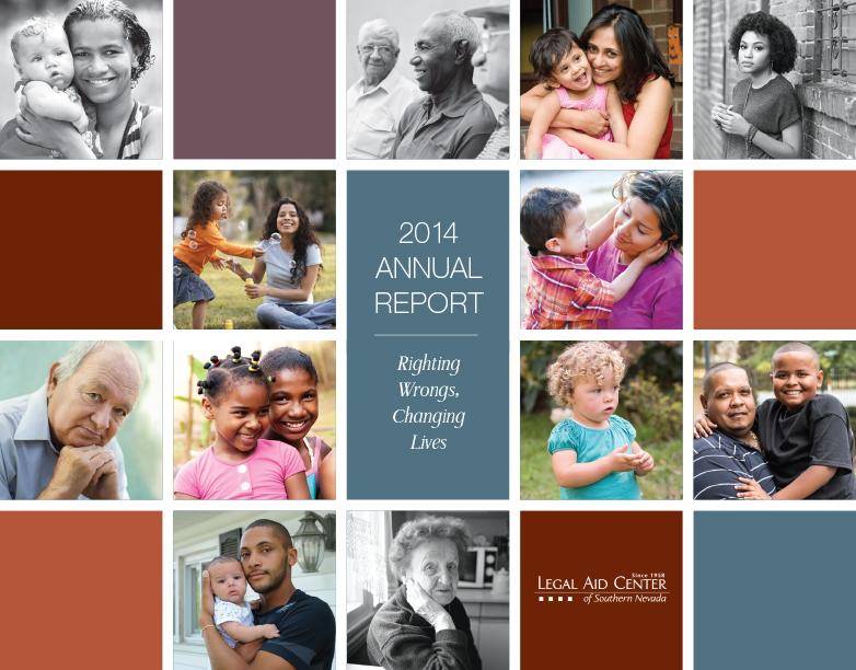 LACSN_2014AnnReport_Cover