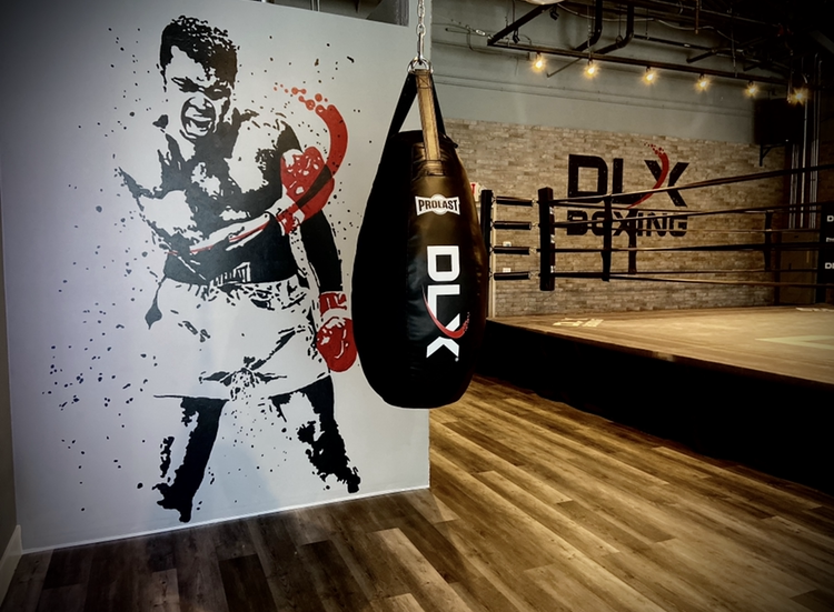 DLX Boxing