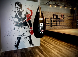 DLX Boxing
