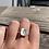 Thumbnail: Tree Ring