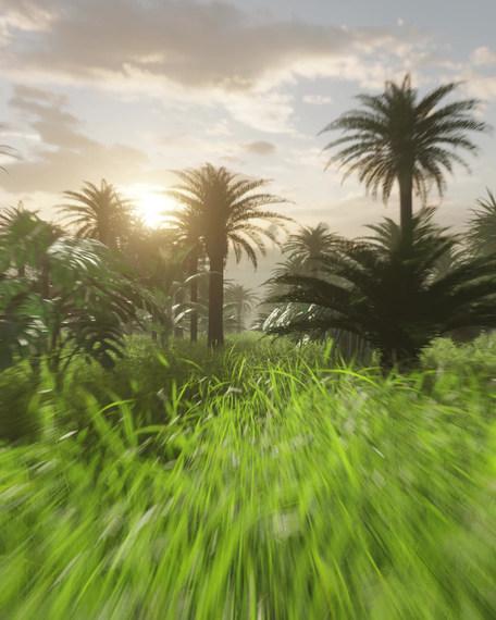 Jungle-Alice-Wexell.mp4