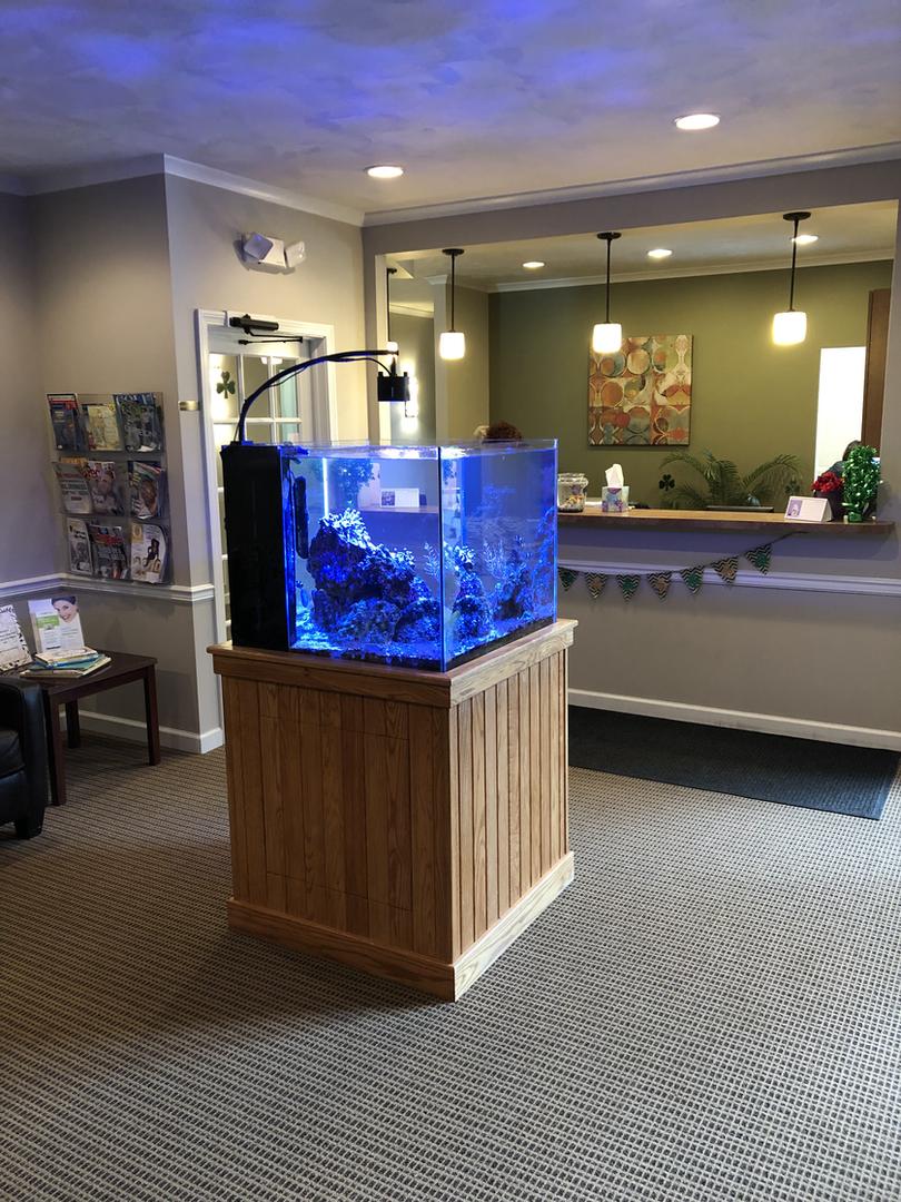 Waiting Room Fish Tank