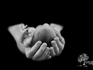 Baby Avison {Aldergrove Newborn Photography}