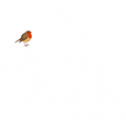 The_Duck_Christmas_2020.png