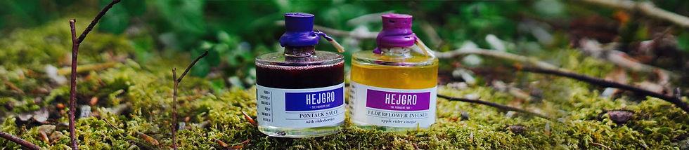 Hejgro Plant Based Foraged Products FOOD.jpg
