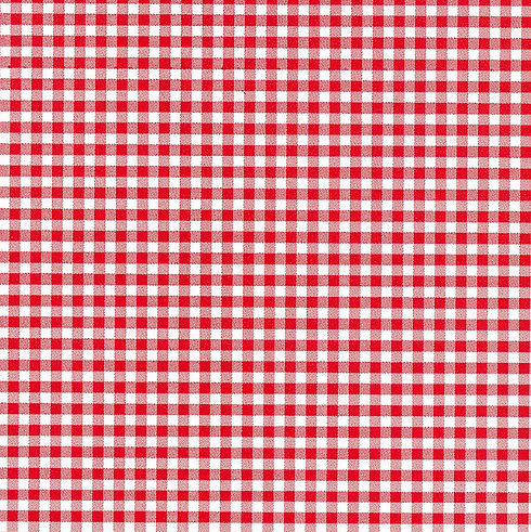 The Luhnch Copany red-gingham.jpg