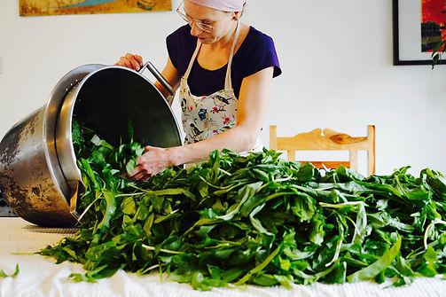 Hejgro Foraged vegan plantbased HOME BANNER 1.jpg