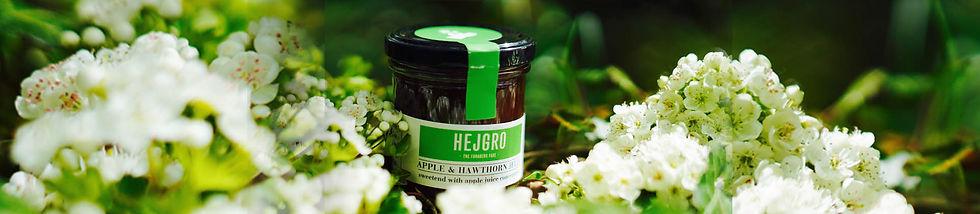 Hejgro Plant Based Foraged Products SHOP2.jpg