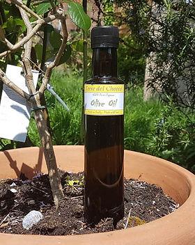 250ml Olive oil NEW.jpg