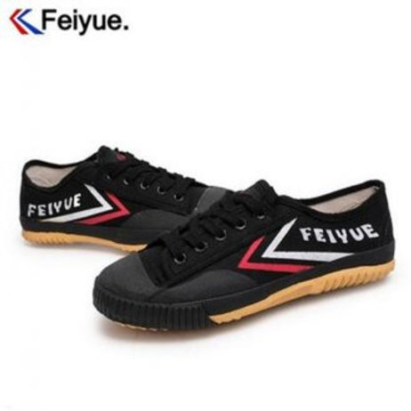 FeiYu Kung Fu Shoes