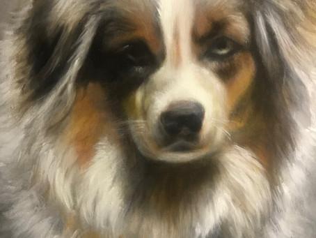 Local Artist Paints Pet & Animal Portraits