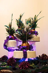 Las Vegas Wedding Cake Aaron Coulson ACEntertainment