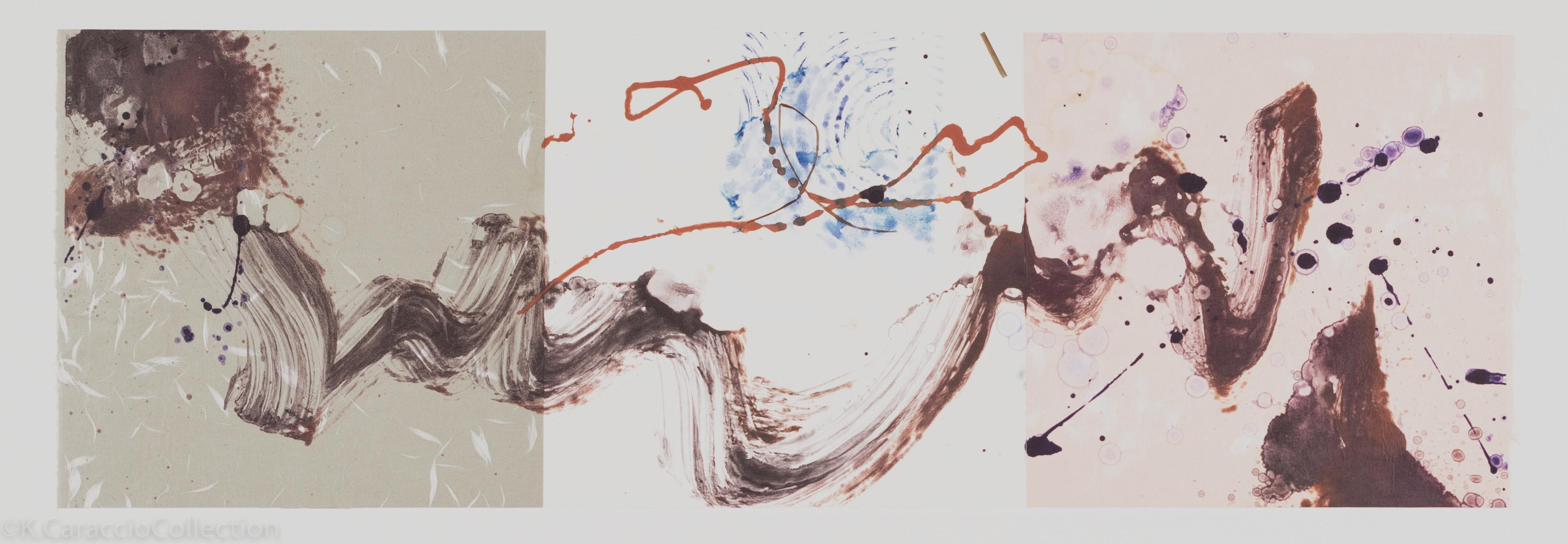 Mistral 14, 1995