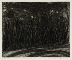 Solitude, 1989