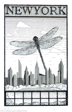 NEW YORK, 2005