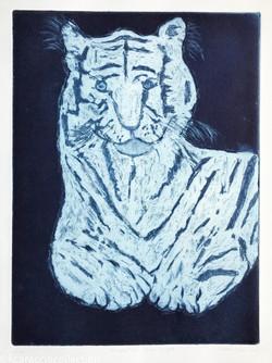 White Tiger, Blue Night, 2019