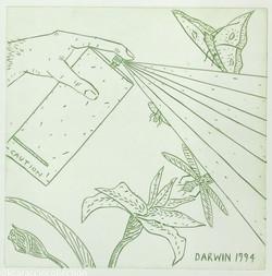 DARWIN, 1994