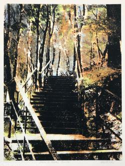 Stairs to Vysoky Zamok, 2010