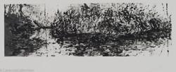Island in Waterlights, 1980