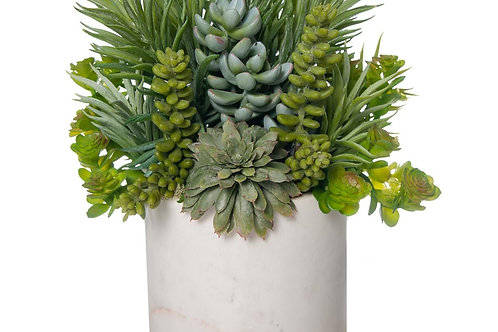 Mixed Succulent White Marble
