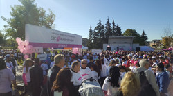 yrarc_run_for_the_Cure