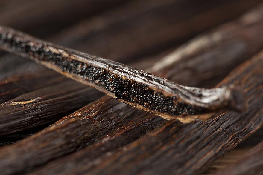 Fresh Brown Organic Vanilla Bean against