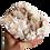 Thumbnail: Apophyllite Cluster #9