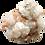 Thumbnail: Large Apophyllite Cluster #1