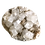Thumbnail: Large Apophyllite Cluster #2