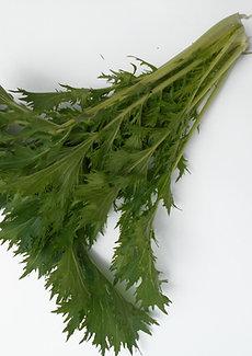 Mitzura Verde