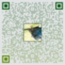 8.qr-code.png