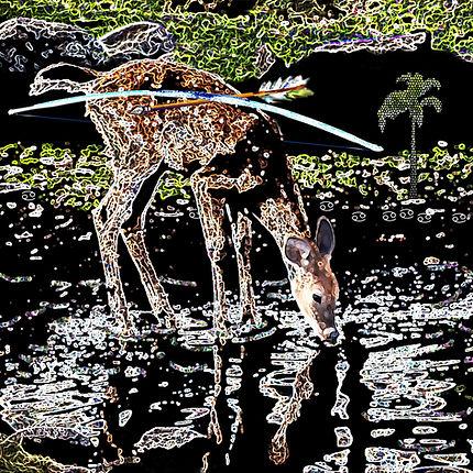 A-4 Cancer  Artemis  Deer.jpg