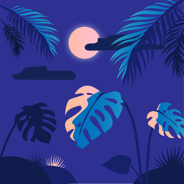 Dschungelnacht