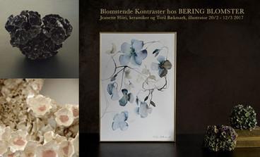 2017 Marts,BERING, House Of Flowers Landemærket 12, 1119 København Udstiller sammen med keramiker Jeanette Hiiri