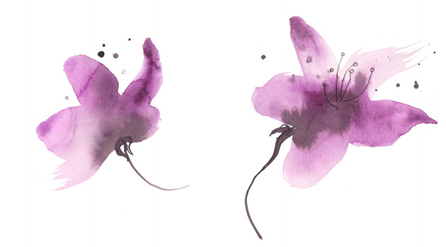 Cherryblossoms, watercolor and ink