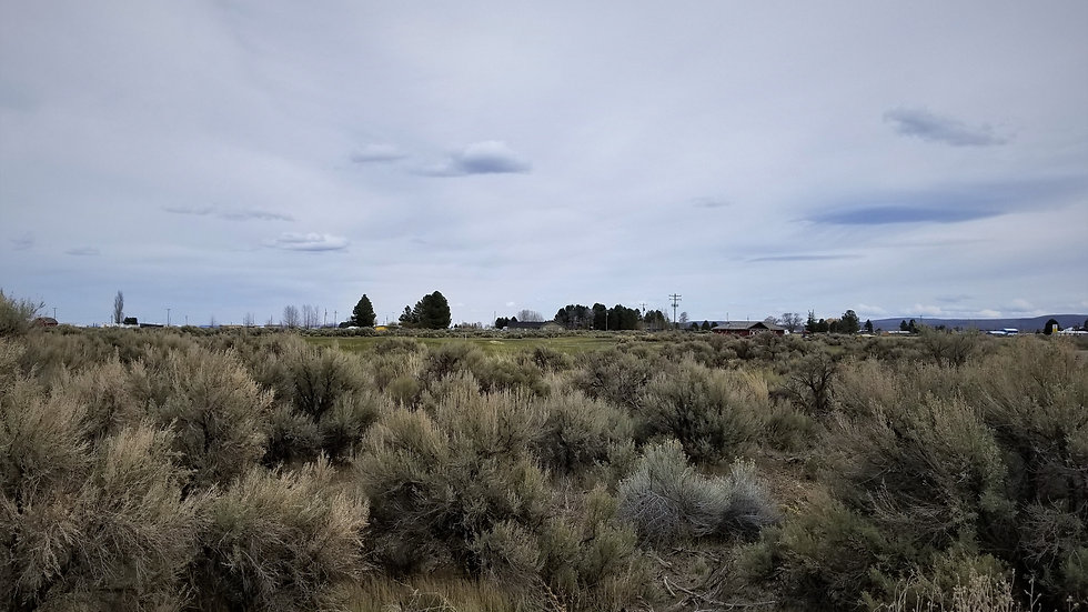 Oregon Golf Course Lot - Christmas Valley - Payments OK