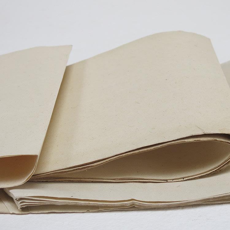 Hemp Paper Workshop