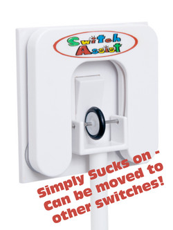 Switch Assist 3.jpg