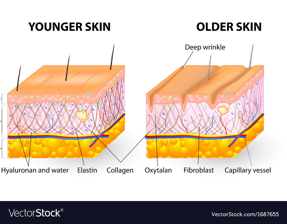 Microneedling Stimulates Collagen Production in Pittsburgh Medspa