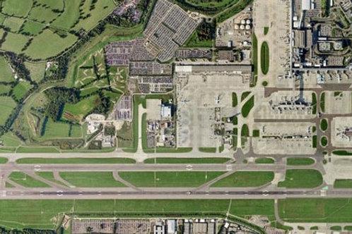 UK Airport grass mix
